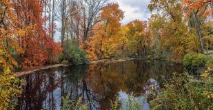 Grand panorama d'étang de ruisseau images libres de droits