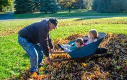 Grand-papa jouant avec des grandkids dans une pile des feuilles Photos stock
