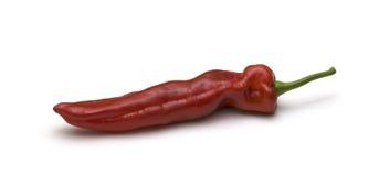 Grand paprika rouge sur le blanc Photos libres de droits