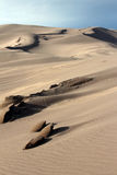 Grand parc national de dunes de sable Photographie stock libre de droits