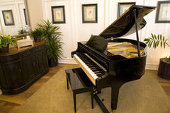 Grand piano 2466. Grand piano in a luxury home music room royalty free stock image