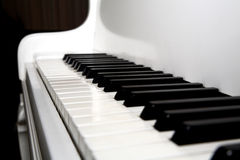 Grand piano. Keys of a grand piano royalty free stock images