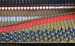 Grand Piano Abstract Featuring Tuning Pins and Damper Felt. Royalty Free Stock Photo