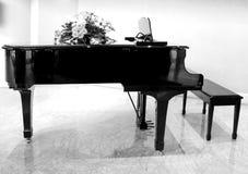 Grand piano B&W stock image
