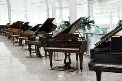 Grand Piano exhibition Royalty Free Stock Photo