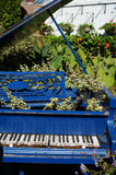 Grand piano in the garden Royalty Free Stock Photo