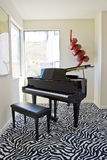 Grand piano leopard Royalty Free Stock Photography