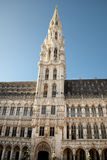 Grand Place of Brussels Royalty Free Stock Images