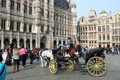 Grand Place Bryssel Belgien Royaltyfri Fotografi