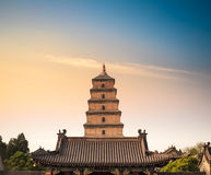 Grand plan rapproché sauvage de pagoda d'oie de Xian image stock