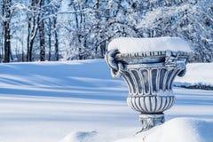 Grand pot de fleur couvert dans la neige fraîche Images libres de droits
