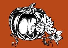 Grand potiron illustration de vecteur