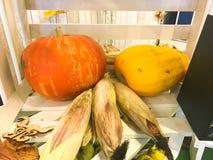 Grand potiron de jaune orange, courgette et maïs vert dans un boîtier blanc en bois photographie stock