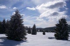 Grand pré de Jizera en hiver Photos libres de droits