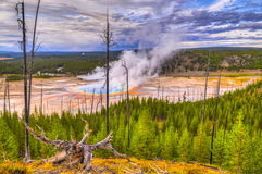 Grand Prismatic Geyser From Above Stock Photo