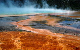Grand Prismatic Hot Spring Mud Flats Royalty Free Stock Photography