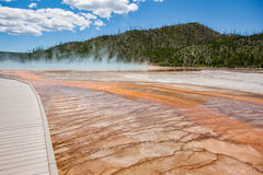 Grand Prismatic Hot Spring with steam rising. Steam rises from the Grand Prismatic Hot Springs in Yellowstone National Park. The vibrant colors of bacteria royalty free stock images
