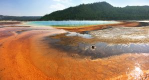 Grand Prismatic Hot Spring in Yellowstone Stock Photography
