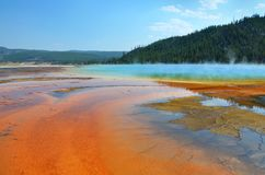 Grand Prismatic Hot Spring in Yellowstone Royalty Free Stock Photo