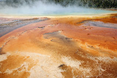 Grand Prismatic Hot Springs mud flats Stock Image