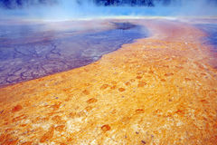Grand Prismatic Hot Springs mud flats Royalty Free Stock Image