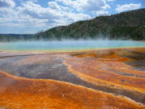 Grand Prismatic Spring. Colorful ground in front of the Grand Prismatic Spring Royalty Free Stock Photos