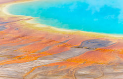 Free Grand Prismatic Spring Stock Photography - 21536952