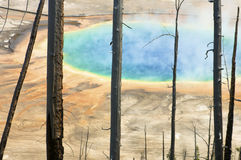 Grand Prismatic Spring. In Yellowstone National Park; Idaho, Montana, Wyoming; Usa Stock Photos
