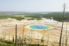Grand Prismatic Spring. In Yellowstone National Park; Idaho, Montana, Wyoming; Usa Stock Photography