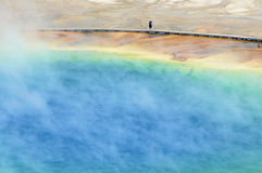Grand Prismatic Spring. In Yellowstone National Park; Idaho, Montana, Wyoming; Usa Royalty Free Stock Images