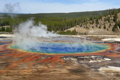 Grand Prismatic Spring View. View of Grand Prismatic Spring in Yellowstone Royalty Free Stock Photo