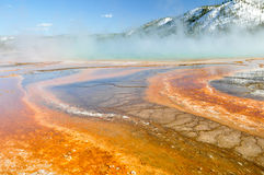 Grand Prismatic Spring, Yellowstone National Park Royalty Free Stock Photography