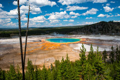Grand Prismatic Spring, Yellowstone National Park Royalty Free Stock Photo