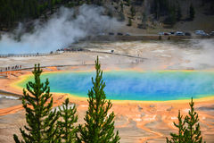 Grand Prismatic Spring, Yellowstone National Park Royalty Free Stock Image