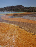 Grand Prismatic Springs Yellowstone Royalty Free Stock Photos