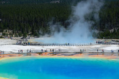 Grand Prismatic Springs Yellowstone National Park Wyoming. Famous trail of Grand Prismatic Springs in Yellowstone National Park from high angle view. Beautiful Stock Photo