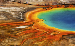 Grand Prismatic. Visitors to Yellowstone National Park get the opportunity to walk along a wooden boardwalk and get up-close and personal with Grand Prismatic Royalty Free Stock Photo