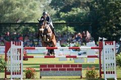 Grand Prix CSIO-W*** August 10, 2014 in Bratislava, Slovakia Royalty Free Stock Photography