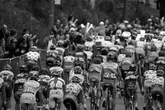 Grand Prix Cycliste de Montreal Royalty Free Stock Photos