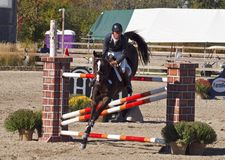 Grand Prix Jumping Stock Image