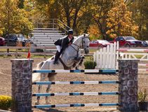 Grand Prix Jumping. Des Moines IA., Des Moines IA Royalty Free Stock Photography