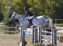 Grand Prix Jumping Stock Photography