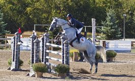 Grand Prix Jumping. Des Moines IA., Des Moines IA Stock Photography