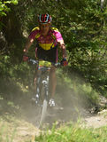 Grand Raid 2012 Stock Photography