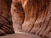 Grand red canyon Royalty Free Stock Images