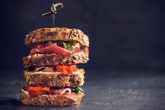Grand sandwich servi s à pain grillé Images libres de droits
