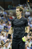 Grand Slam Champion Andy Murray in action during US Open 2015 first round match Royalty Free Stock Photography