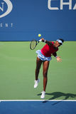 Grand Slam champion Venus Williams during quarterfinal doubles match at US Open 2014 Royalty Free Stock Photos