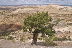 Grand Staircase Escalante National Monument Royalty Free Stock Images