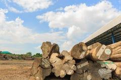 Grand stockage de bois de construction de teck yaed Image stock